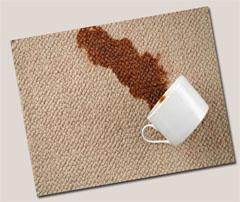 carpet-care